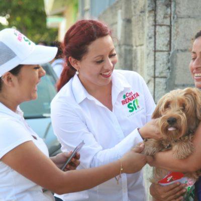 Renata Ríos buscará modificar la Ley de protección y bienestar animal para atender problema de sobrepoblación de fauna callejera