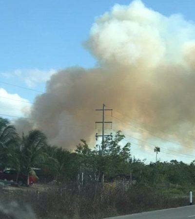 Incendio forestal en Bacalar