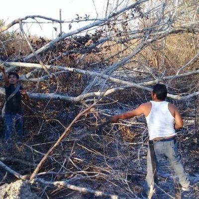 Incendios consumen 50 hectáreas en Sacalaca