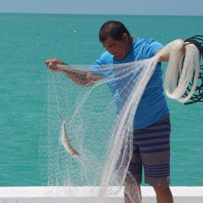 Salen al mar 12 mil pescadores yucatecos por el fin de la veda del mero