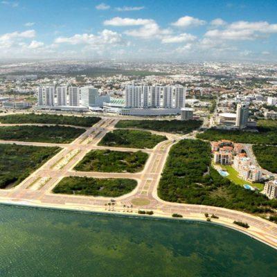 ORDENAN REFORESTAR MANGLAR EN TAJAMAR: Nueva sentencia de Tribunal confirma que ningún proyecto turístico podrá desarrollarse en disputado polígono en Cancún
