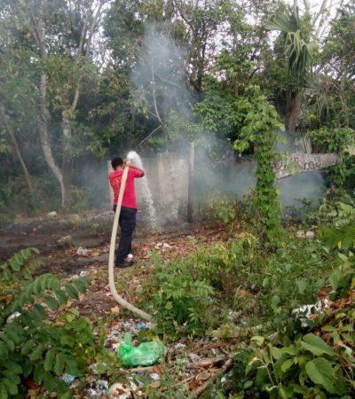Continúa la vigilancia por la temporada de incendios forestales 2019
