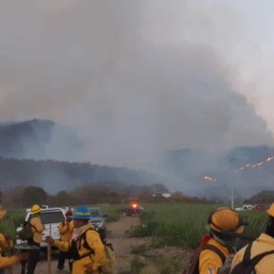 Controlan incendio en el Bosque de La Primavera, en Jalisco, tras 25 horas; 1,900 hectáreas afectadas
