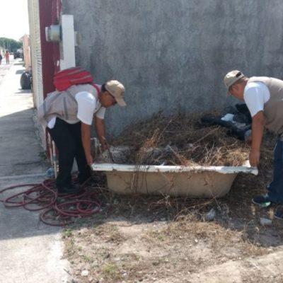 Gobierno de Puerto Morelos llama a ciudadanos a eliminar posibles criaderos de mosquitos