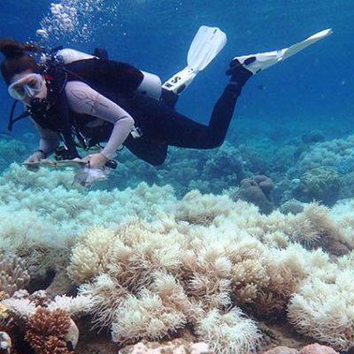 """""""Guías que permiten tocar los arrecifes son traidores que no velan por el entorno natural del que muchos dependen"""", asegura César Cepeda Escamilla"""