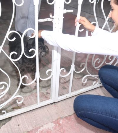 """""""Daremos mayor atención a los animales"""": Claudette González"""