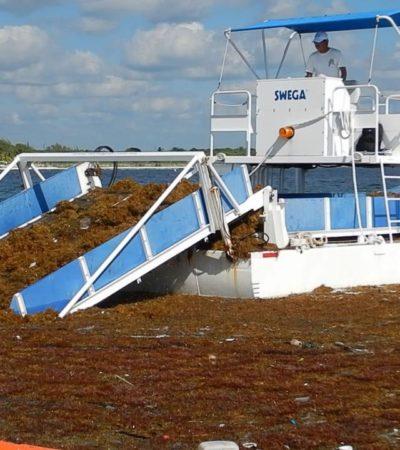 El sargazo junta a AMLO y a Carlos Joaquín; buscarán solución urgente a la crisis por el recale del alga en Quintana Roo