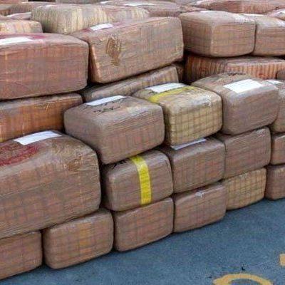 DECOMISO EN LA MÉRIDA-CANCÚN: 400 kilos de mariguana ya no llegarán a Playa de Carmen