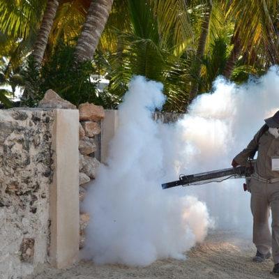 Asegura subdirector de Salud de Cozumel que todavía no se confirma que deceso de una persona haya sido a causa de dengue hemorrágico
