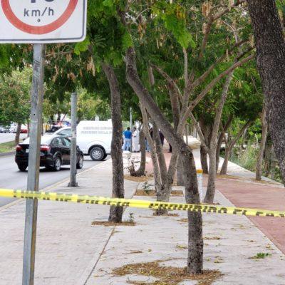 HALLAN MÁS RESTOS HUMANOS EN CANCÚN: Encuentran maleta con cuerpo descuartizado ahora en la Región 77