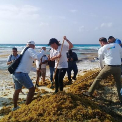 Ante falta de lugar para el destino final del sargazo, toneladas de material terminan en el relleno sanitario de Cancún