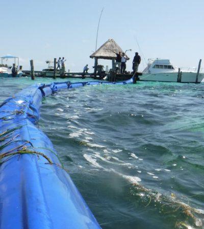 Inician colocación de barreras marinas en Puerto Morelos como parte de una estrategia para frenar recale de sargazo