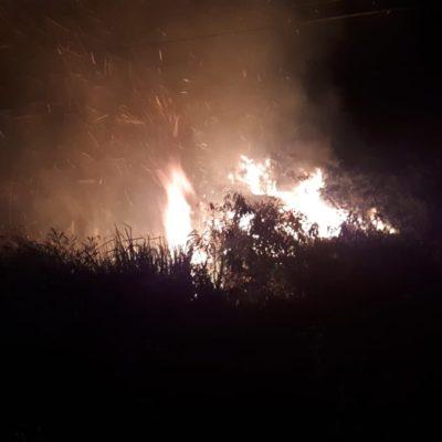 Reportan en Xul-Ha incendio de maleza