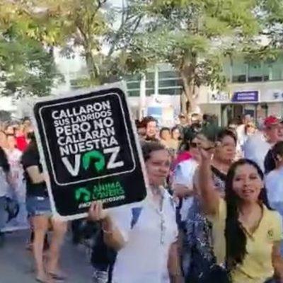 Marchan campechanos contra envenenamiento de perros y gatos; sospechan de autoridades