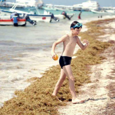HISTÓRICA ARRIBAZÓN DE SARGAZO: Calculan que con el alga que llegue este año a QR se podrían cubrir 3 mil canchas de futbol