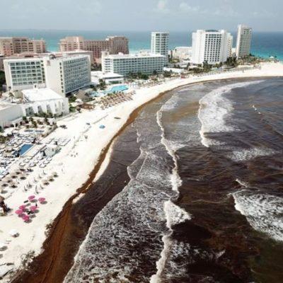 Impactará sargazo hasta en recaudación de impuestos ante baja demanda hotelera en Quintana Roo