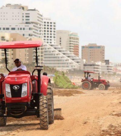 Movilizan hasta 400 trabajadores municipales para la limpieza de playas de Cancún ante el arribo de sargazo