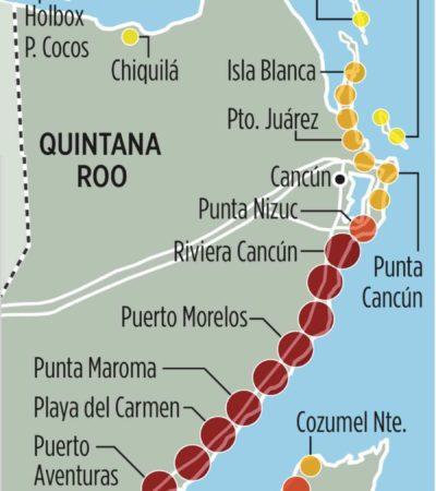 AMENAZA A QR EFECTO SARGAZO: El recale del alga cubre ya más de 150 kilómetros del litoral del Caribe mexicano, alertan