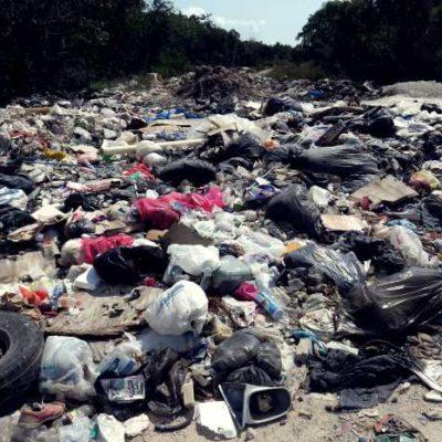 Refuerza servicios públicos los trabajos de recolección de basura en Cancún, asegura Jorge Aguilar