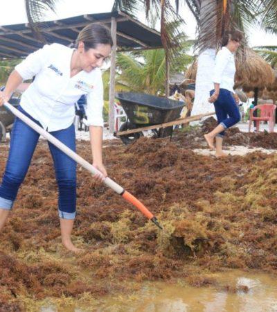 Participa Claudette González en la limpieza de playas de Mahahual y se compromete a buscar soluciones al problema del sargazo