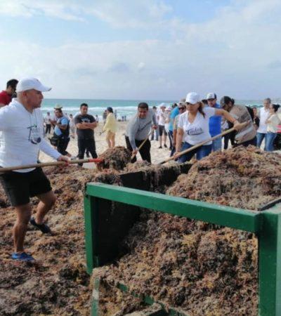 """Participan todos los sectores de Cancún en la segunda gran jornada de limpieza de playas """"Todos contra el sargazo"""""""