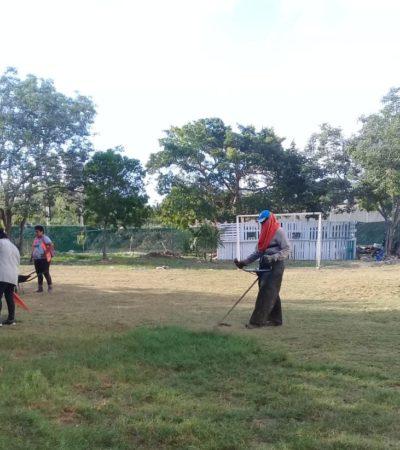Realizan jornadas de limpieza en escuelas de Isla Mujeres para prevenir la proliferación de mosquitos transmisores de dengue, zika y chikungunya