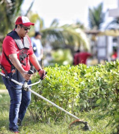 Funcionarios municipales se unen para limpiar y embellecer colonias de Isla Mujeres