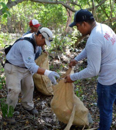"""Ayuntamiento de Isla Mujeres y voluntarios realizan jornada de limpieza del pulmón verde """"La Hacienda Mundaca"""""""