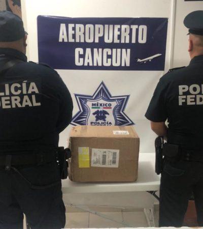 Detectan paquete con casi 3 kilos de marihuana con rumbo a Playa del Carmen