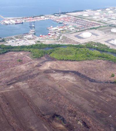 Oculta Pemex impacto ambiental de Dos Bocas porque podría incrementar el costo de las operaciones financieras