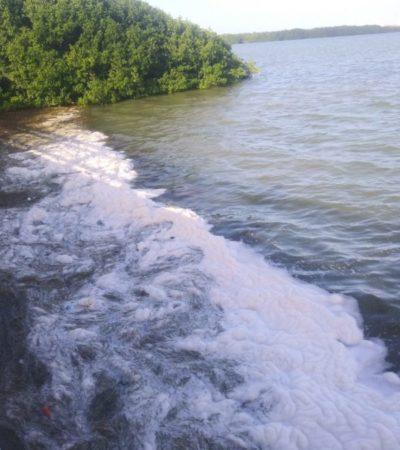 Autoridades minimizan contaminación con detergentes de la Laguna Nichupté
