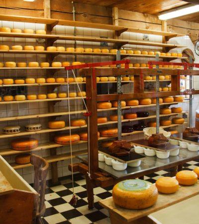Enseñará Mérida a holandeses cómo se usa su queso Edam, al que en México llamamos queso bola