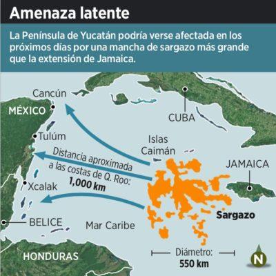 AMENAZA A QR GRAN MANCHA DE SARGAZO: Anticipan fuertes recales del alga en toda la costa del Caribe mexicano a partir de la próxima semana