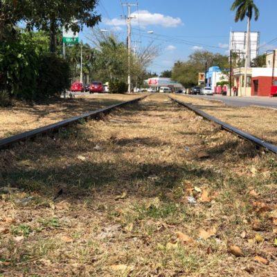 Estarían en Mérida oficinas centrales del Tren Maya, adelanta Jiménez Pons