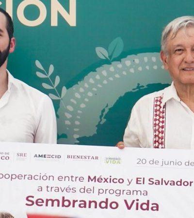 Invertirá México hasta 100 mdd para implementar el programa 'Sembrando Vida' en El Salvador
