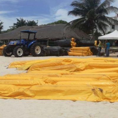 Vuelve Grupo Arco a Playa del Carmen para colocar barreras antisargazo que en 2018 no dieron resultados