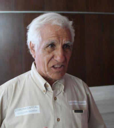 Investigador de la UNAM presenta método de recolecta de sargazo fuera de la zona de playas