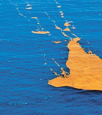 Arribo masivo de sargazo amenaza al Golfo de México, África y Europa, advierten expertos