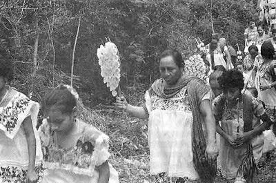 Los pueblos indígenas como sujetos de derecho y no de interés público | Por Gilberto Avilez Tax