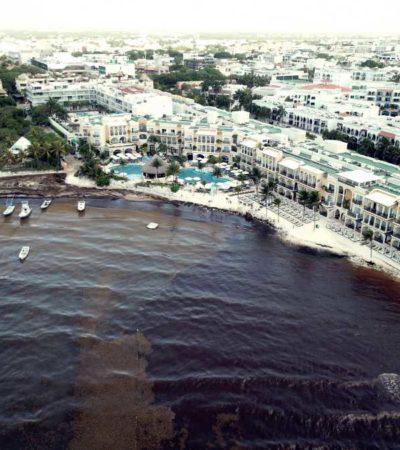EL SARGAZO SE ENSAÑA CON PLAYA: El Recodo, en pleno centro de la ciudad, una de las zonas más afectadas por la invasión de la macro alga