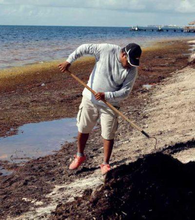 """""""Sargazo no es un tema menor y requiere de mucha atención"""", responde Coparmex Cancún"""