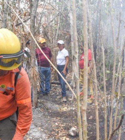 Conatos de incendios forestales en Puerto Morelos no representan peligro para la población