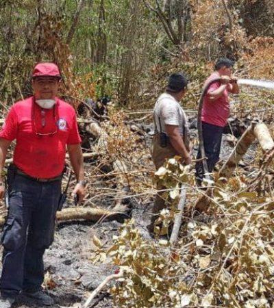 Gobierno de Puerto Morelos interpone denuncia en la Fiscalía contra responsables de incendios que afectan el municipio