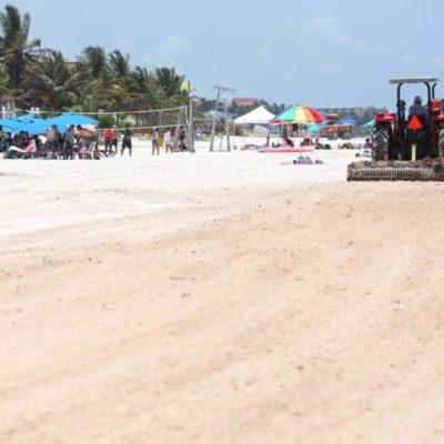 Laura Fernández verifica el trabajo de atención al sargazo y la recuperación de playas de Puerto Morelos