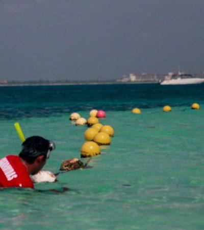 Colocan nueva línea de boyado en playa Centro de Isla Mujeres para protección de bañistas