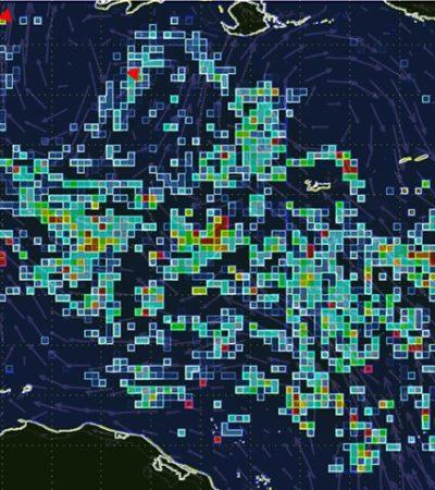MANCHA DE SARGAZO ALCANZA A QR: Documentan inicio de nuevo recale masivo del alga en las costas de la zona norte del Caribe mexicano