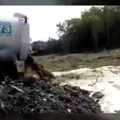 Denunciarán a Aguakan con Procuraduría Ambiental por contaminar cenotes en Playa del Carmen