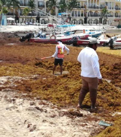 Barreras de Grupo Ar.Co no impiden el recale masivo de sargazo que afecta a prestadores de servicios de la playa El Recodo