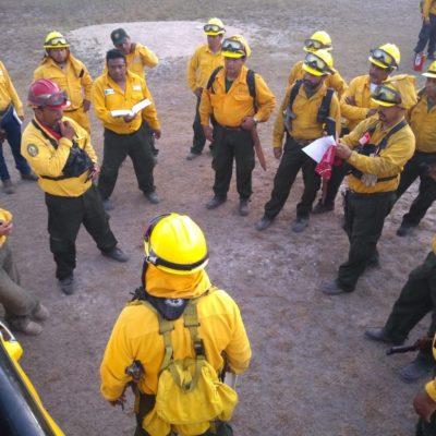 Incendio en Sian Ka'an, controlado en 85% y liquidado en 75%, informa Conafor