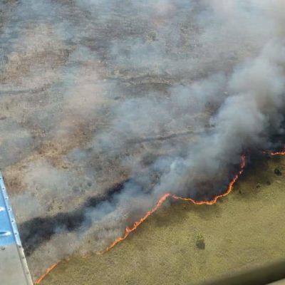 AVANZA INCENDIO EN SIAN KA'AN: Ya suman 2 mil 500 hectáreas siniestradas en la reserva de la biósfera en FCP